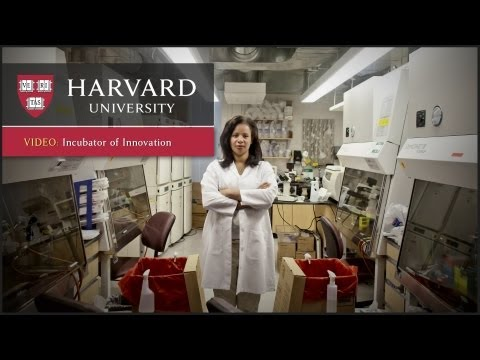 Incubator of Innovation - Innovation at Harvard - YouTube