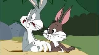 Looney Tunes Webtoons - Bunk Bedlam