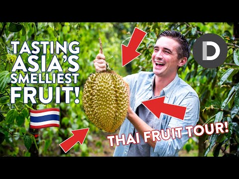TRYING DURIAN- Smelliest Fruit In The World! THAI FRUIT TOUR!