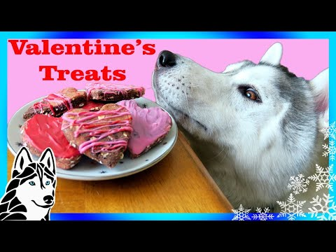 VALENTINE'S DOG TREATS DIY | Marble Hearts 💘 | Snow Dogs Snacks 65 | DIY Dog Treats