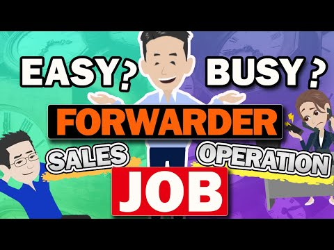 How busy the Freight Forwarder Job is? Explained the points to judge busy forwarder.