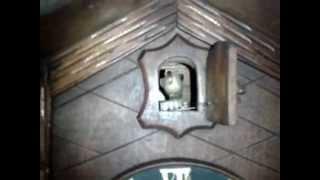 Antique German Cuckoo Clock  (antigo Relógio Cuco Alemão)
