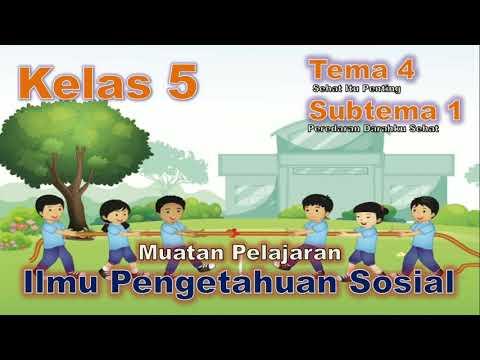 Contoh Interaksi Antar Individu Tema 4 Kelas 5 - Wulan