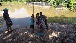 Local Orphans on the Farm