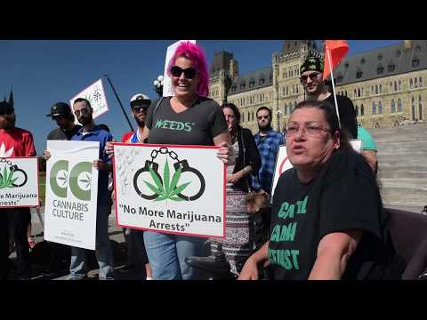 Sherry Morrison outlines issues with LPC plan for Cannabis legalization