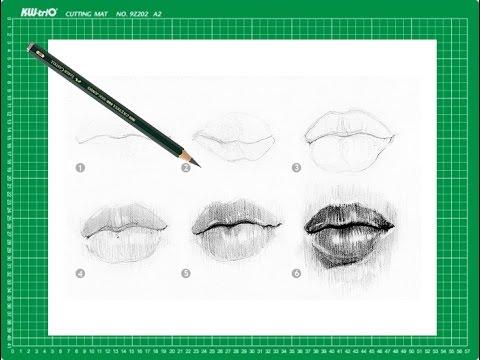 Curso De Dibujo A Lapiz Cap 8 Los Labios De Frente Youtube