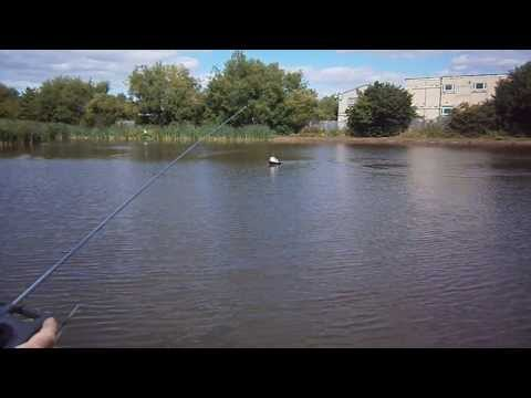 Radio Control Tug on Birchley Canal Sandwell West Midlands UK