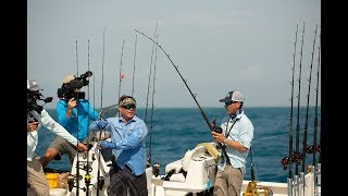 Reel Time Florida Sportsman - Pelagic Live Bait Teaser - RTFS