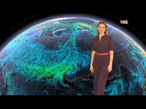 Погода сегодня, завтра, видео прогноз погоды на 7.12.2019 в России