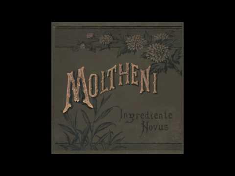 Moltheni - In centro all orgoglio mp3