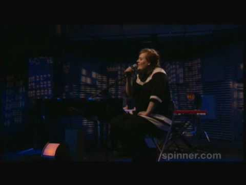 ADELE  Make You Feel My Love  acoustic Spinnercom