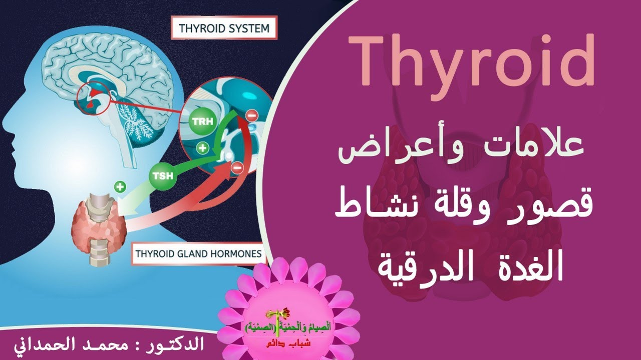 الغدة الدرقية كيف تعالج قصور قلة نشاط الغدة الدرقية Thyroid Gland Youtube