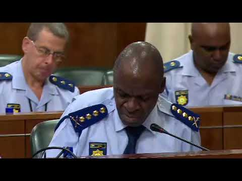 SAPS management briefs Police Committee on SAPS crime unit