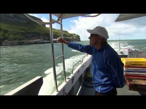 Sea Fishing Trips In North Wales