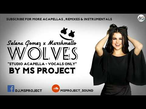 Selena Gomez, Marshmello  Wolves Studio Acapella  Vocals Only