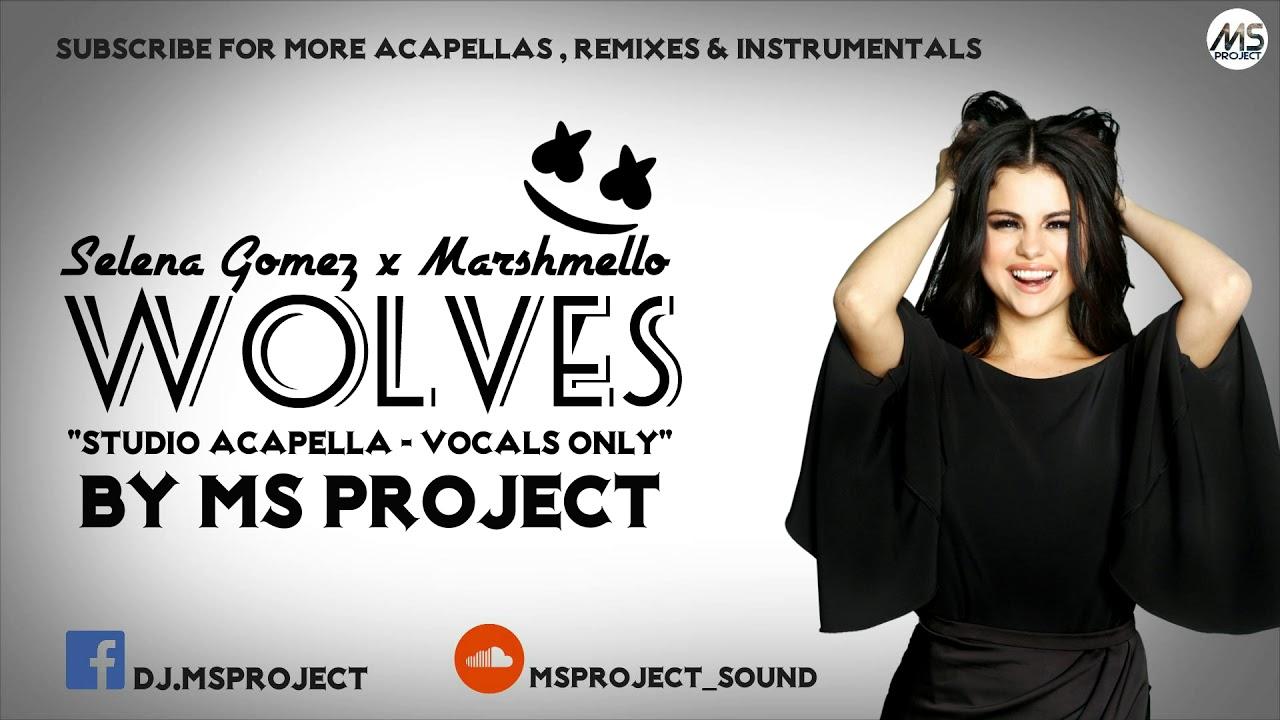 Selena Gomez, Marshmello - Wolves (Studio Acapella - Vocals Only