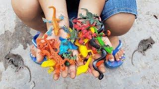 Trò Chơi Bé Vui Thế Giới Sinh Vật ❤ ChiChi ToysReview TV ❤ Đồ Chơi Trẻ Em Baby Fun Bài Hát