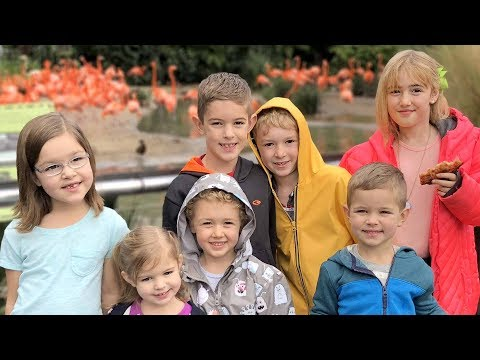 San Diego Zoo ~ Homeschool Kids Socialize w/ J House Vlogs