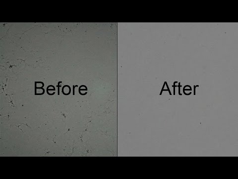 Canon 30D : How To Clean Fungus From Camera Sensor With Isopropyl Alcohol