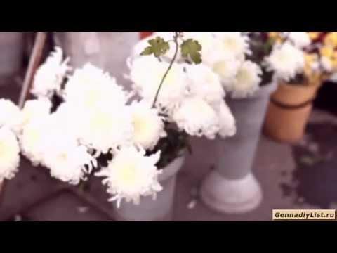 Геннадий Лист - Хризантемы