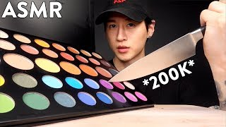 ASMR DESTROYING JAMES CHARLES PALETTE FOR CHARITY No Talking 200K CELEBRATION  Zach Choi ASMR