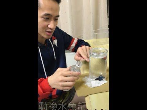 [DIY]洪教授教你如何自製自動換水魚缸 - YouTube