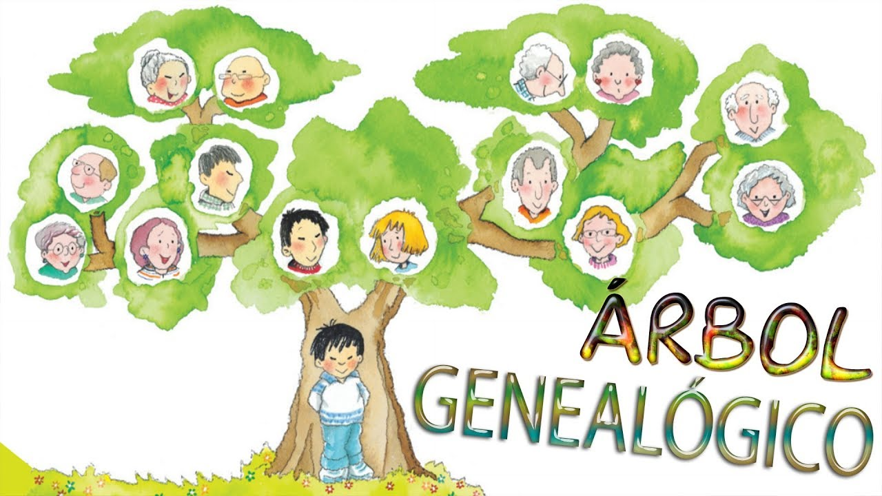 árbol Genealógico En Ingles Youtube