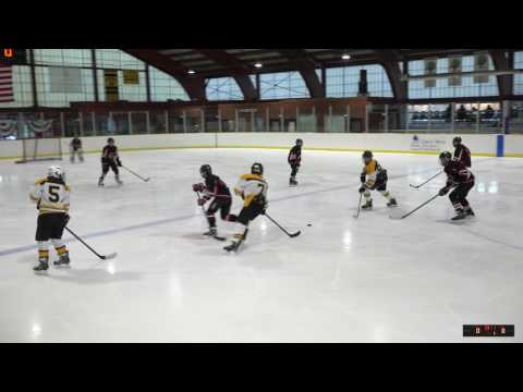 Brewster Bulldogs vs. Great Neck Bruins
