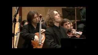 Beethoven Triple Concerto Opus 56 : Trio Carlo Van Neste / Complete Version.