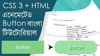 css animated button bangla tutorial css and html