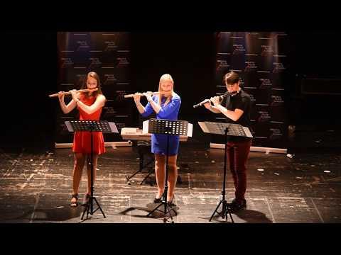 Student Concert of 4th Croatia Flute Academy 2017