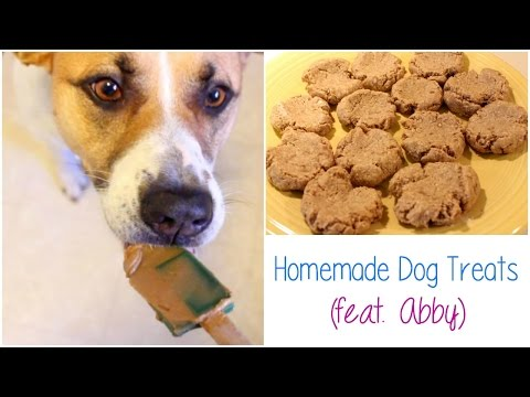 HOW TO MAKE HOMEMADE PEANUT BUTTER OATMEAL DOG TREATS | Allie Young