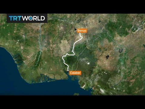Money Talks: Superhighway threatens Nigeria's biggest forest