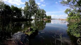 Stive Morgan - Bindweed Above The Water (Вьюн над водой)
