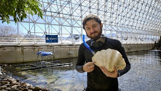 Clams Tell the Story of a Changing Climate