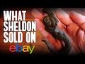 What Sheldon Sold On eBay #22: Mermaid Hanging Hook, 14k Gold Realtor Pin, Ferragamo Shoes