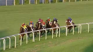 Vidéo de la course PMU PRIX DE SAN SEBASTIAN