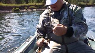 рыбалка на ленка, тайменя, щуки и хариуса, на Мане