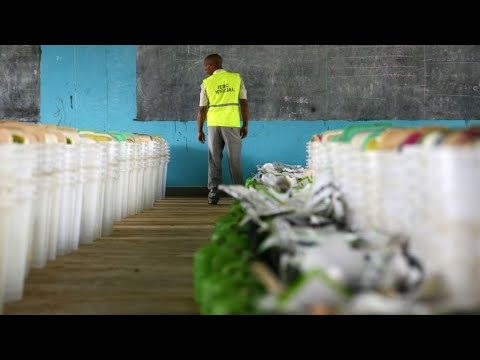 Kenya: No signs of fraud in presidential vote, EU observers say