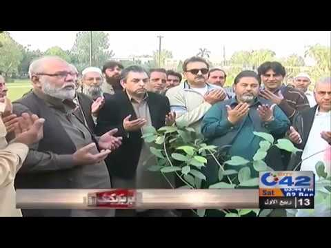 """ Tree Planting "" campaign continue by City42"