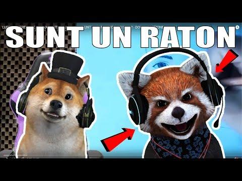 RATONUL REACTIONEAZA LA REACTIA LUI INSANITY LA CLIPUL MEU! :O
