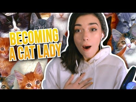 BECOMING A CRAZY CAT LADY