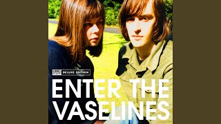 Provided to YouTube by Sub Pop Records Sex Sux (Amen) · The Vaselin...