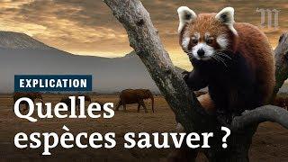 Doit-on vraiment sauver toutes les espèces menacées ?