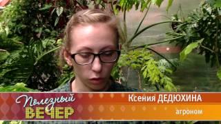Растения для животных (Полезный вечер, 41 канал)