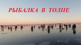 Рыбалка в толпе на Волге Первый лёд 2020 2021