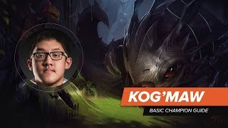 Team Liquid Keith Kog
