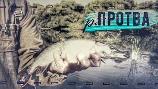 Спиннинговая рыбалка на р.Протва Калужской области