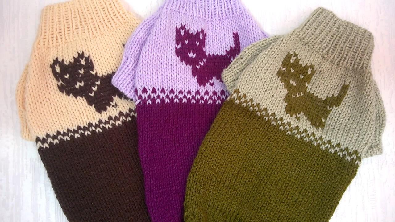 4 вязаные свитера для йорков чихуахуа тойтерьеров Youtube
