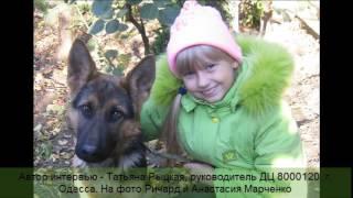 Инфекционный энтерит у собаки, как помогли Пептиды НПЦРИЗ. Отзыв